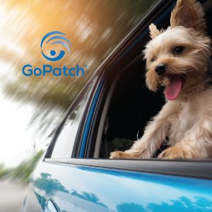 GoPatch makes dogs happy